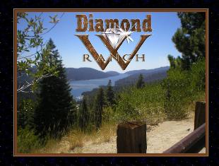 Diamond w ranch